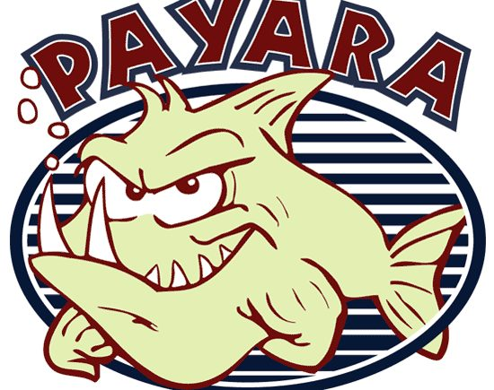 Payara fish for microprocessor